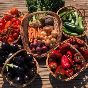 Abonament lunar , cosul cu legume
